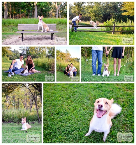 Old School Forest Preserve Pet Photos
