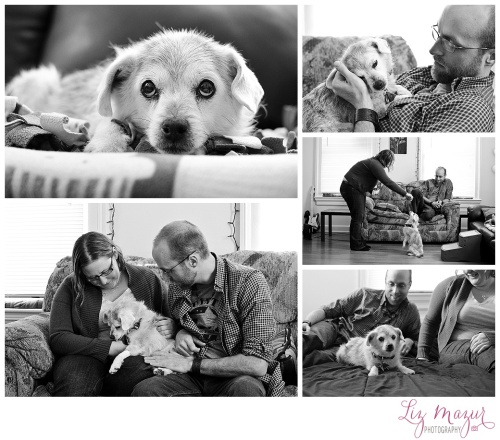 senior terminally ill pet photographer