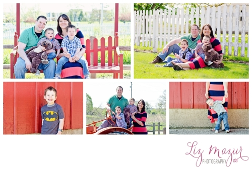buffalo grove il photographer liz mazur